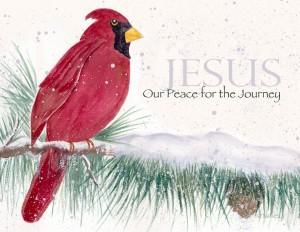 Jesus Peace, Christmas